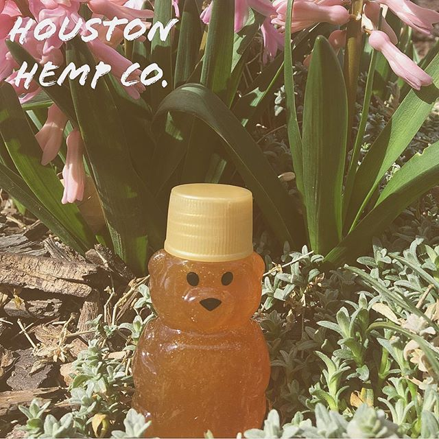 🐰Happy Easter🐣 Did you know CBD can be added to 🍯  CBD is actually safe to add to any food!  #houston #texas #htx #hemp #cbd #cbdoil #wellness #beauty #lowerstress #alleviatepain #natural #localhouston #onlinestore #dripped #topical #vape #additive #houstonhempco #houstonhemp #musclepain #revivesskin #richcbd #highqualitycbd #vapeit #applytopically #eatit #cbdlife #healthylife #healthinessnothighness #easter