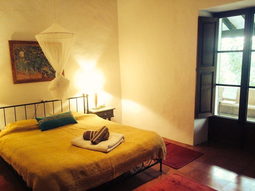 Dima Room single.jpg