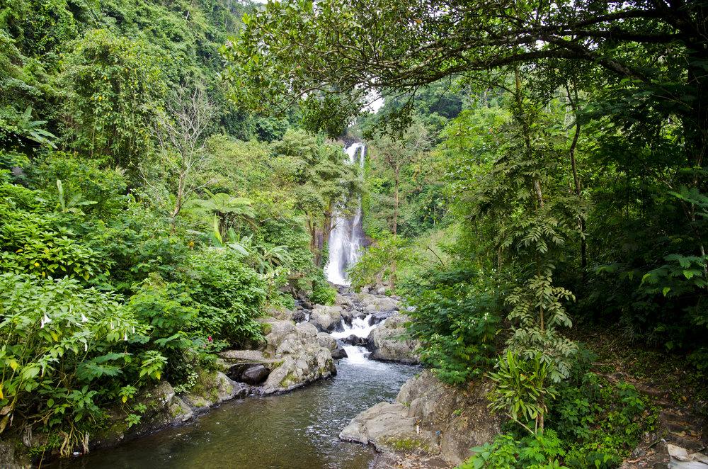 Bali2012-154.jpg
