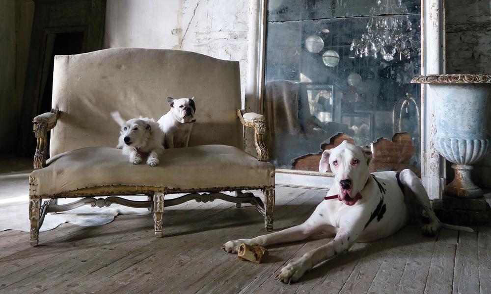 Alex McArthur Interiors in VE Magazine