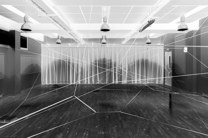 Colloquium Dendrite Form © Caroline Lambard .jpeg