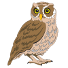 Be Wiser Owl Logo