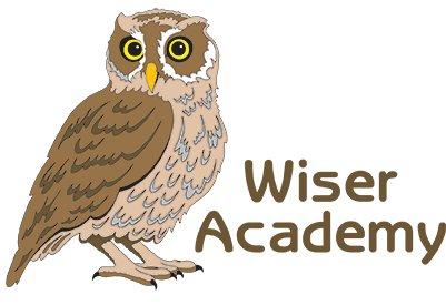 wiser-academy.jpg