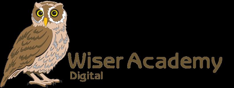 Wiser-Academy_Digital wide trans SML.png