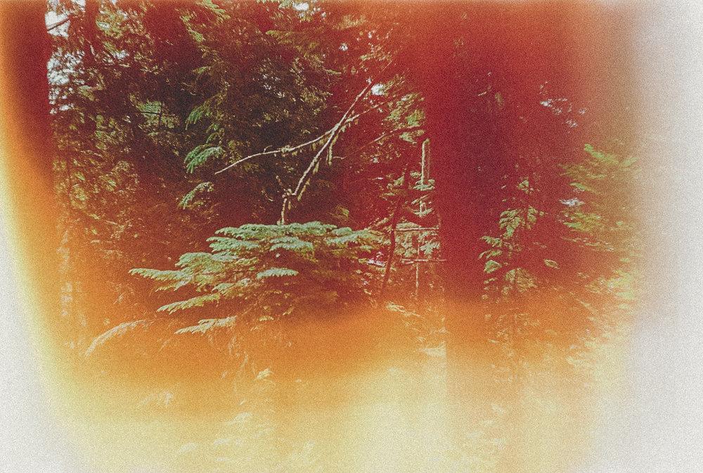 PLACES-EMILYBEEKSCREATIVE-22.jpg
