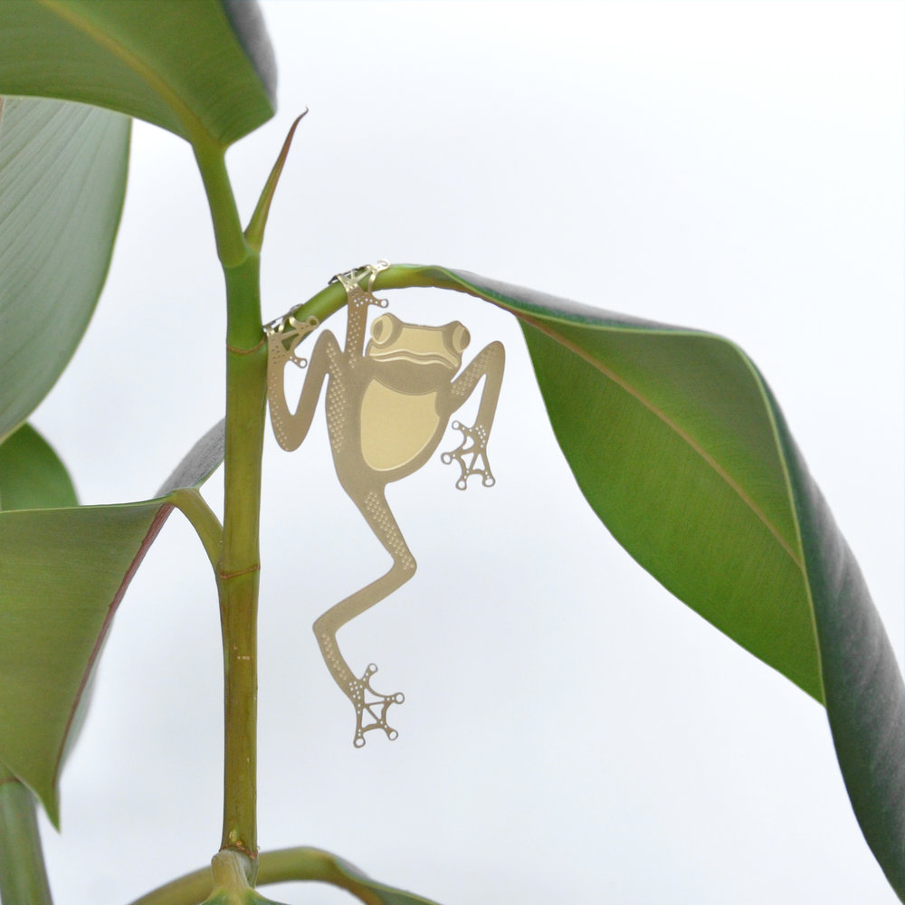 tree-frog-rubber.jpg