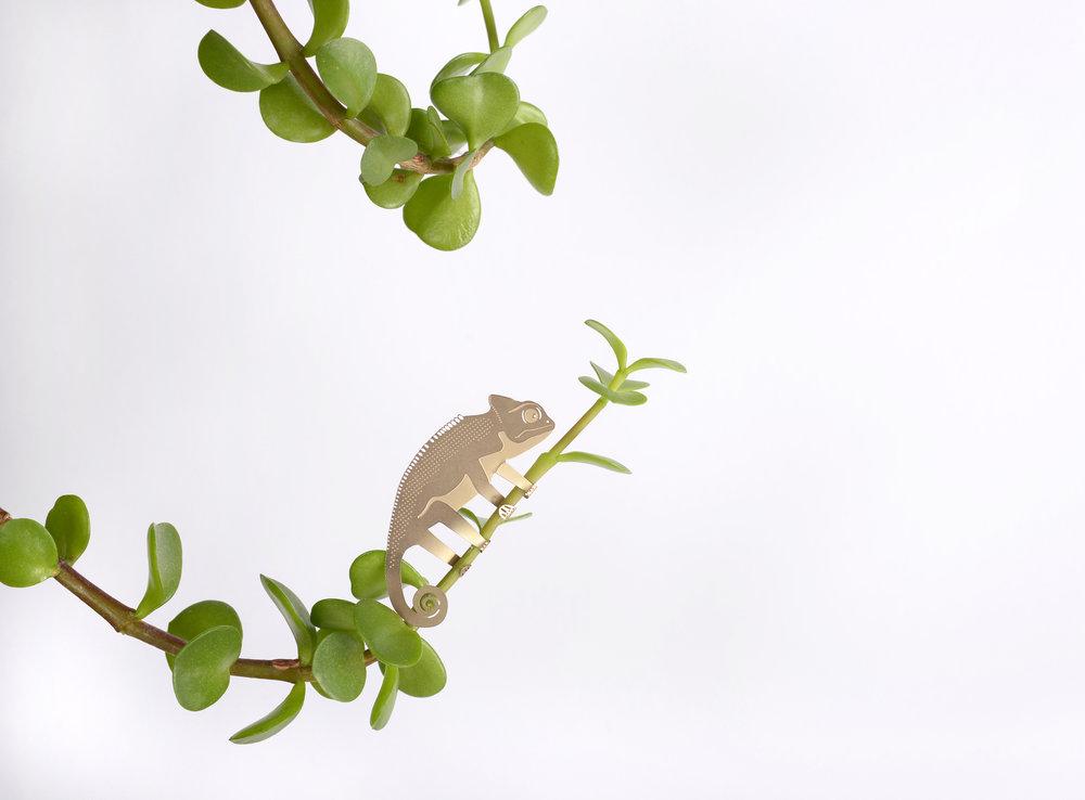 chameleon-plants2-hires.jpg