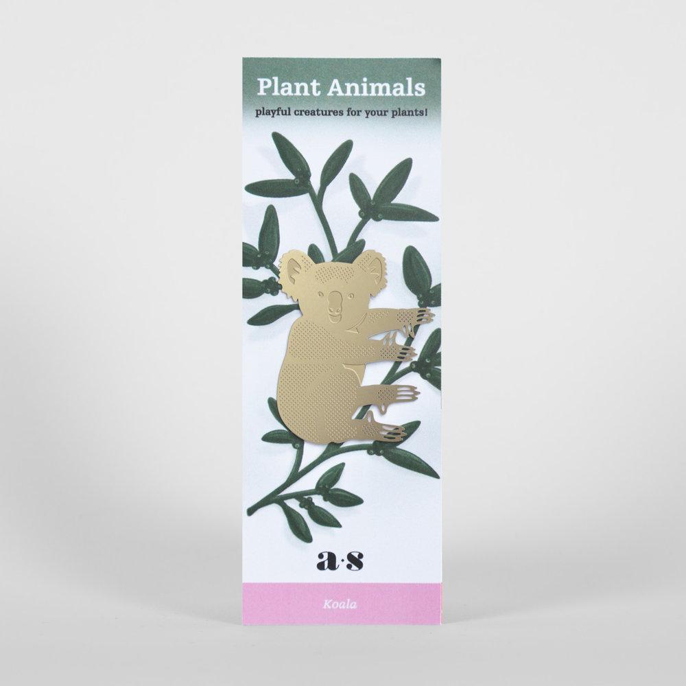 koala-packaging.jpg