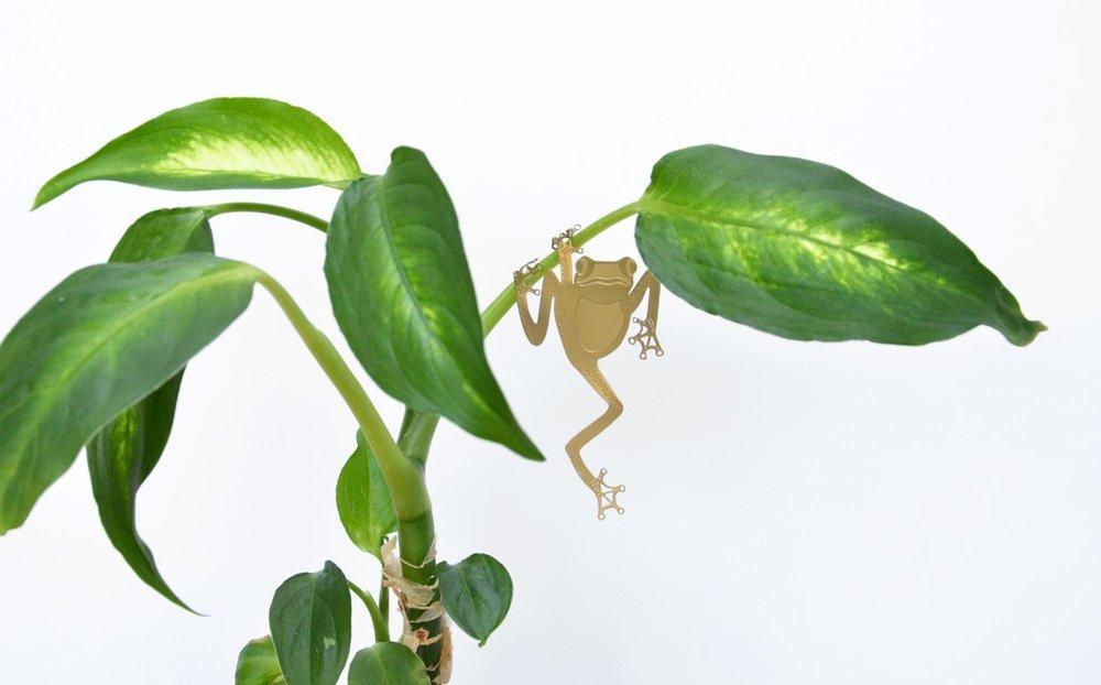 tree-frog - kopie.jpg