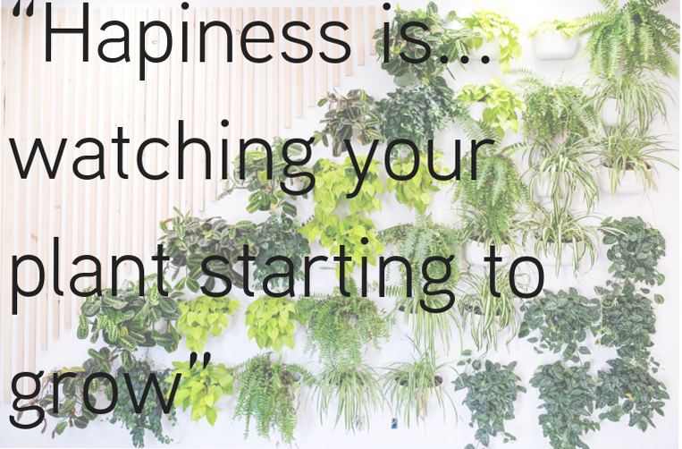 hapiness is...watching your plant starting to grow.png