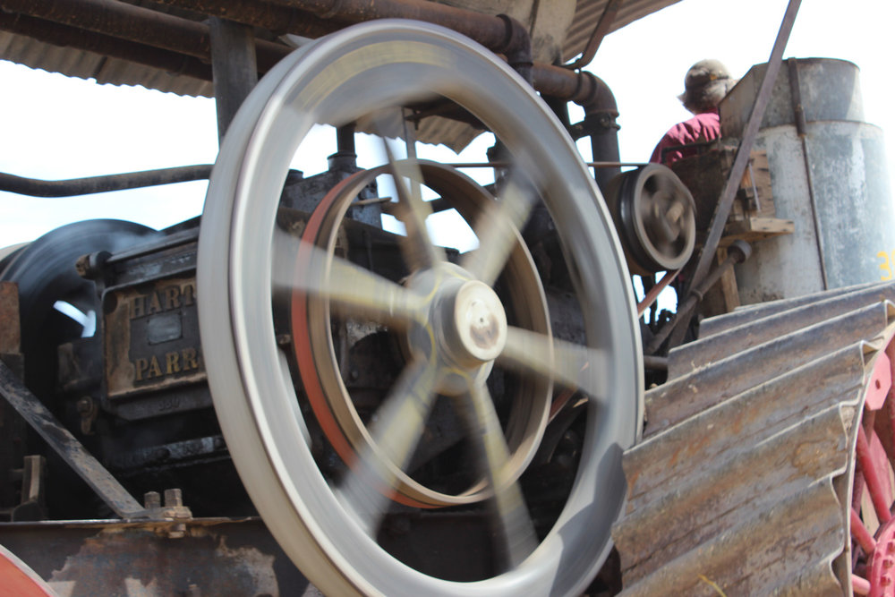 The heavy flywheel is spinning again, after many years of stillness. Its momentum helps propel the big Hart-Parr on the plow.  Photo Luke Steinberger