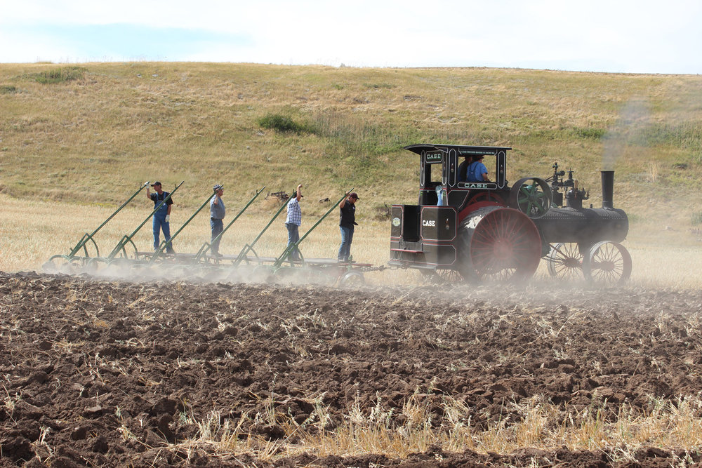Neighbor Clarence Young kindly brought over his 110hp Case plowing engine. It helped recreate the past when Walter Mehmke did custom plowing on Montana farms.  Photo Luke Steinberger
