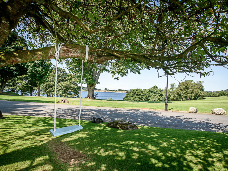 Swing overlooking lake.jpg
