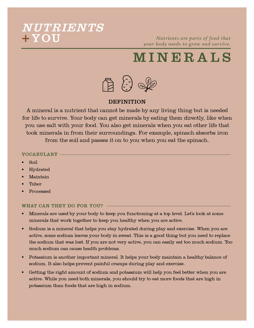 Nutrients+You_Minerals.jpg