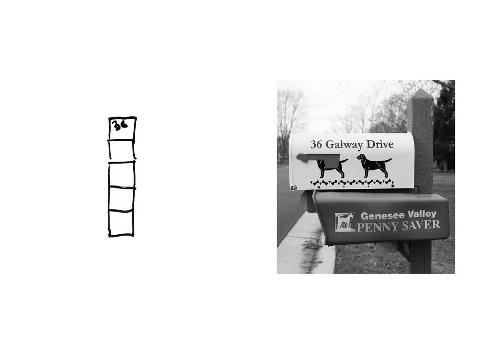 maloney_puzzles_websitie5.jpg