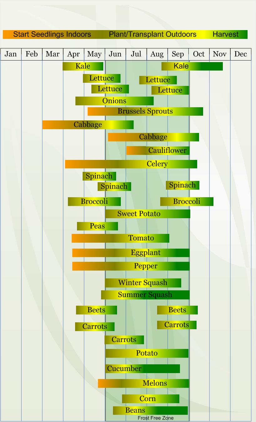 Edible Gardening — Vern Goers Greenhouse
