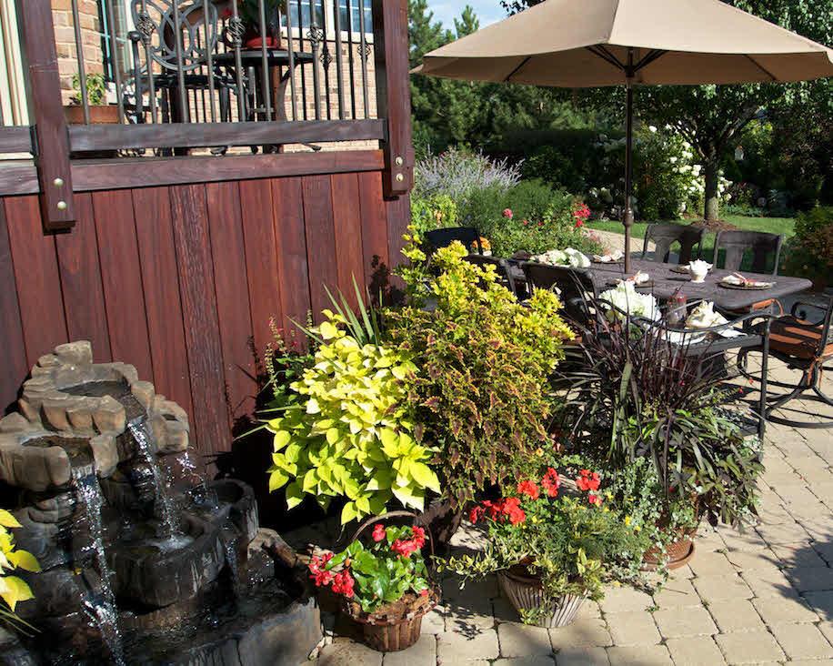 Charlotte's Garden