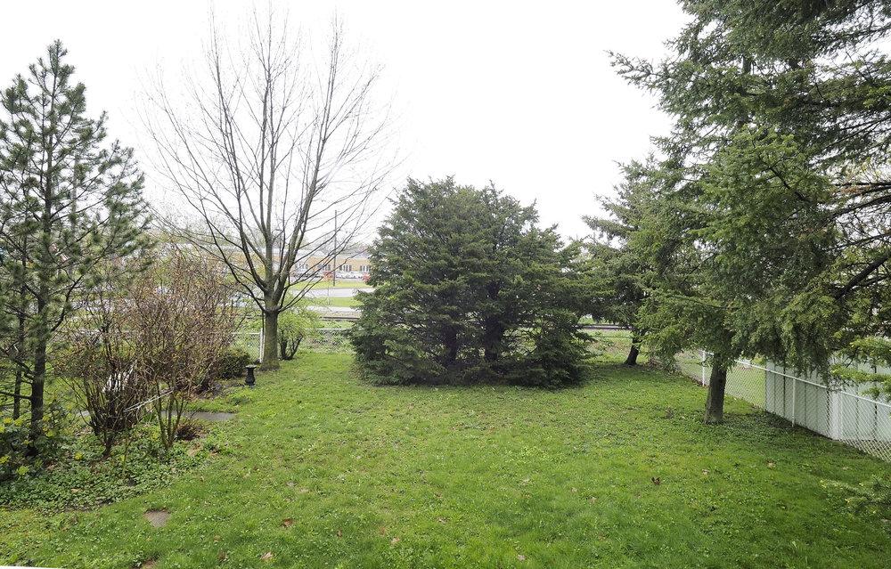 112 Back yard.JPG