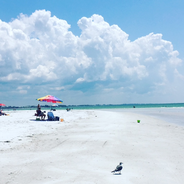 But by Friday, I was back at the beach. This is Siesta Key Beach post-hurricane.