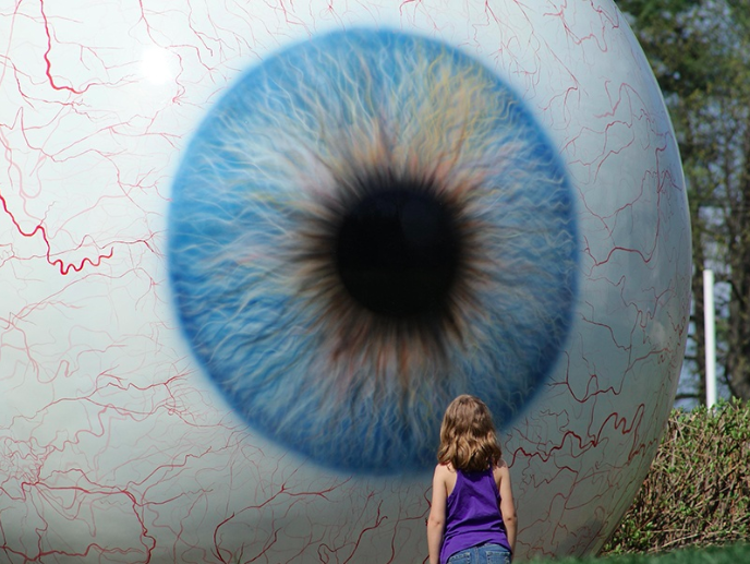Tony Tasset's  Eye  stares intently back at visitors to Laumeier Sculpture Park in Saint Louis. Photograph: Alamy.
