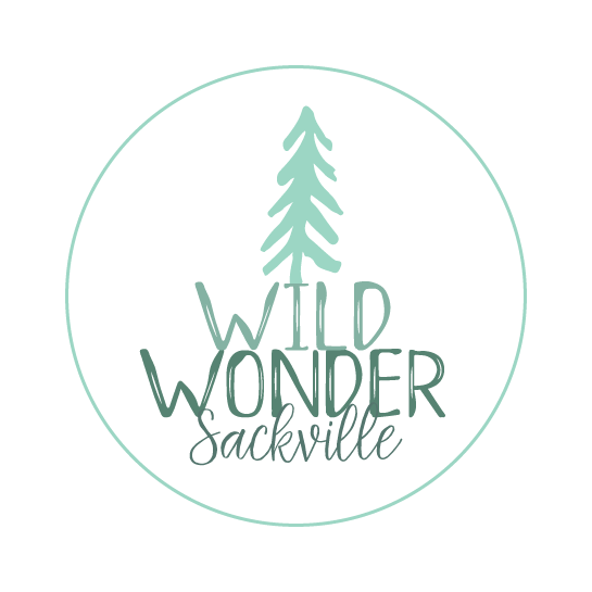 Wild Wonder Sackville