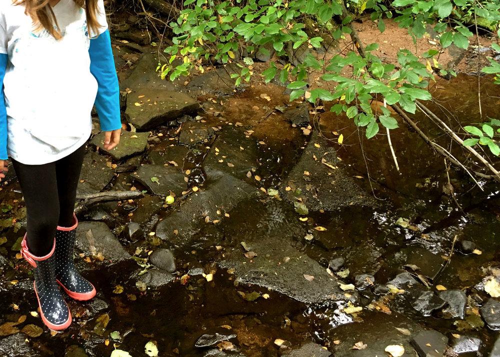 creek_n.jpg