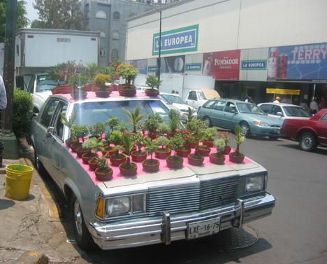 Mexico.Car.jpg