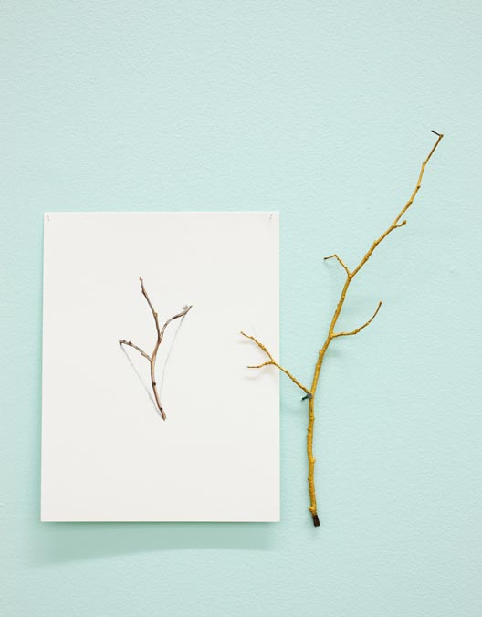 The Golden Bough , 2010, mixed media on paper, acrylic on twig, nail.