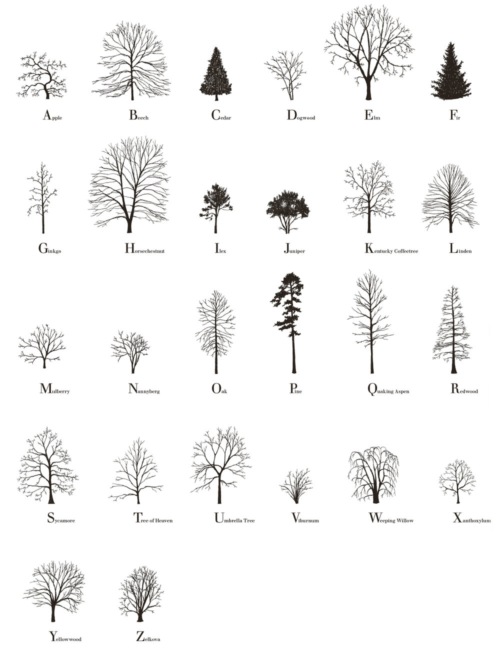 Tree Alphabet, 2015, a set of four signed and numbered limited edition prints, 308gsm, 50 x 70 cm, edition of 50. Available here from Broken Dimanche Press.