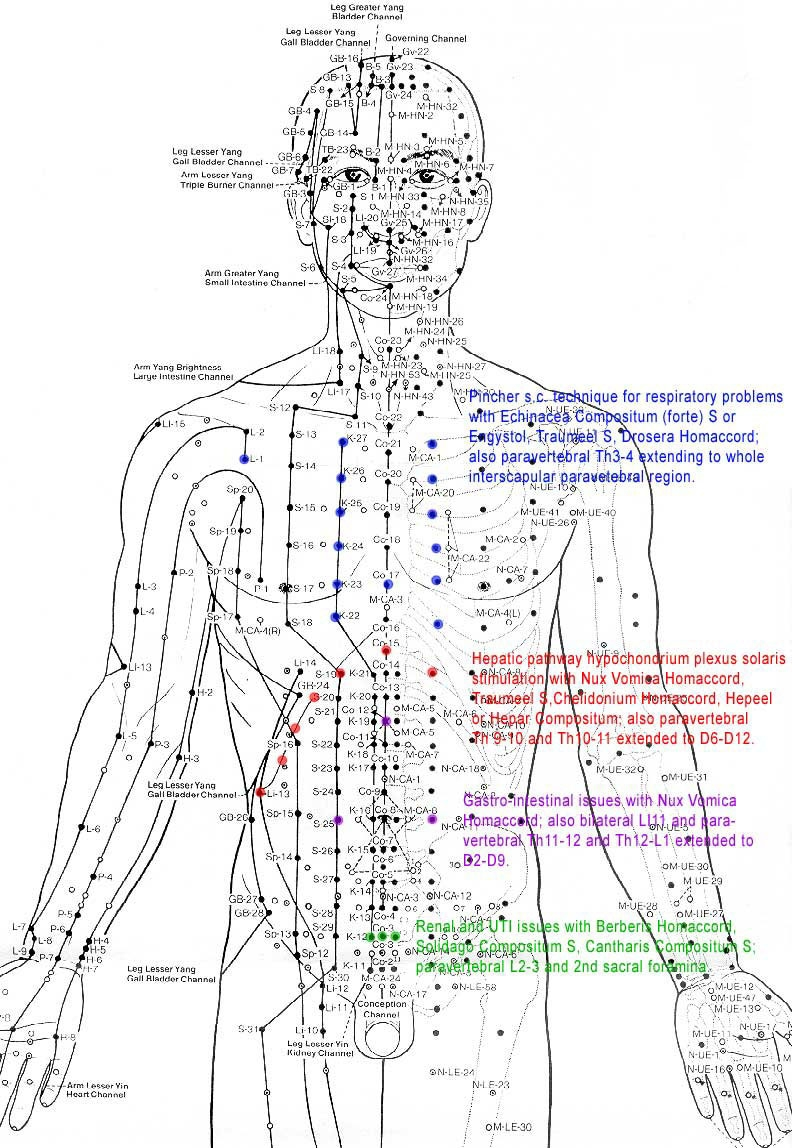 chart-acupuncturechart_5422679073_o.jpg