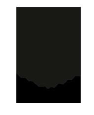 logo-naalma2.png