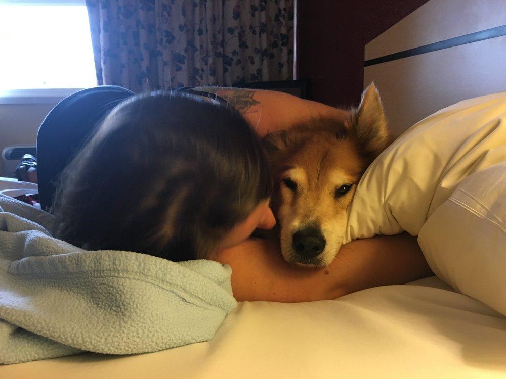 Traumatized puppy needs comfort. G'night!