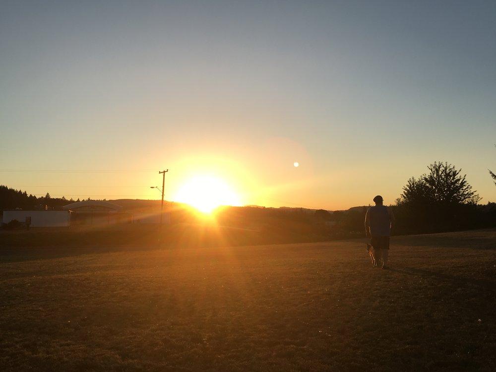 Cookie loves sunset walks.