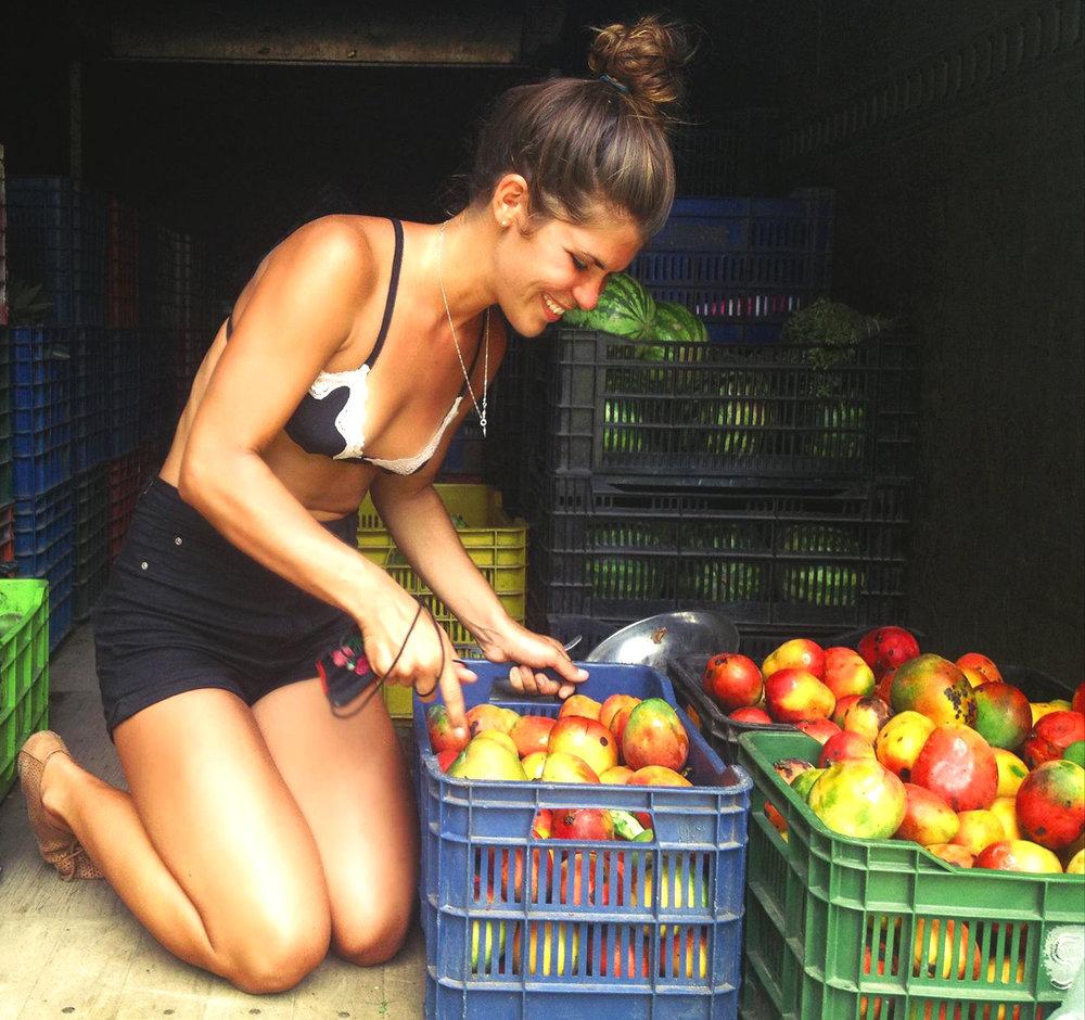 nomade voyager vegetarien vegan