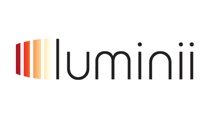 luminii light build design