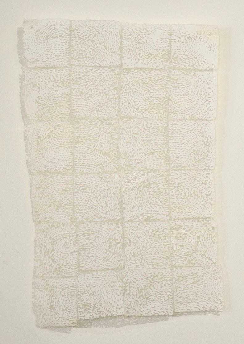 "Quietly   cotton, nylon / devoré  21"" x 13""  2002"