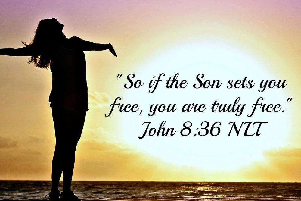 Son set free.jpg