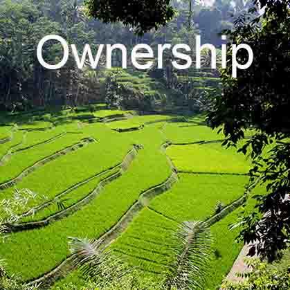 Ownership-square.jpg
