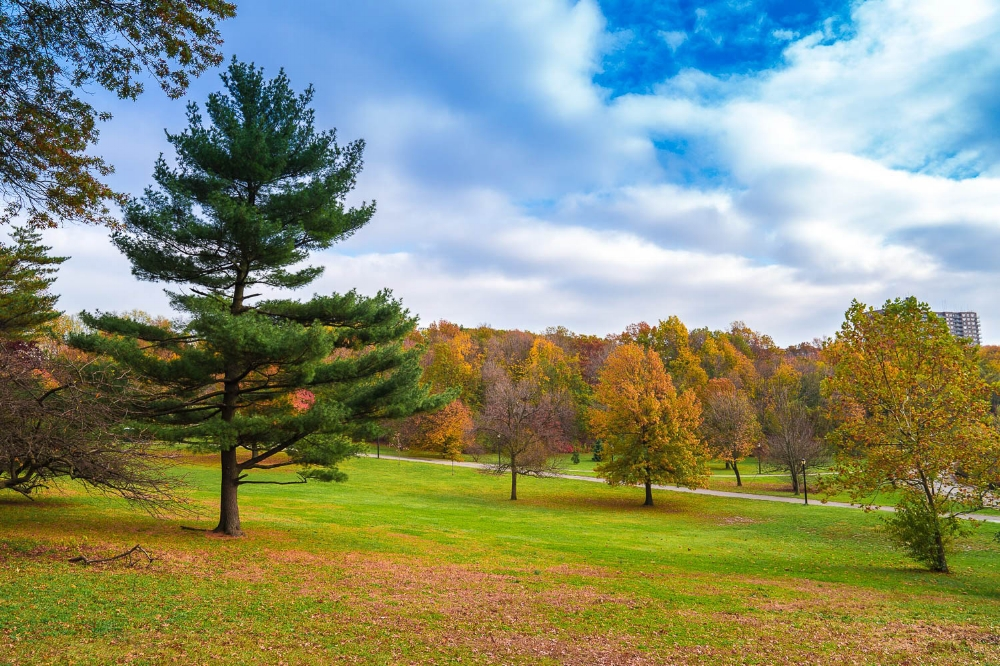 Silver Lake Park is particularly beautiful in the autumn with the changing leaves and crisp breezes.