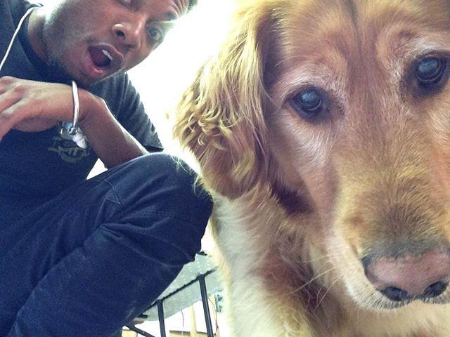 This the best dog... I want a dog sooooo bad