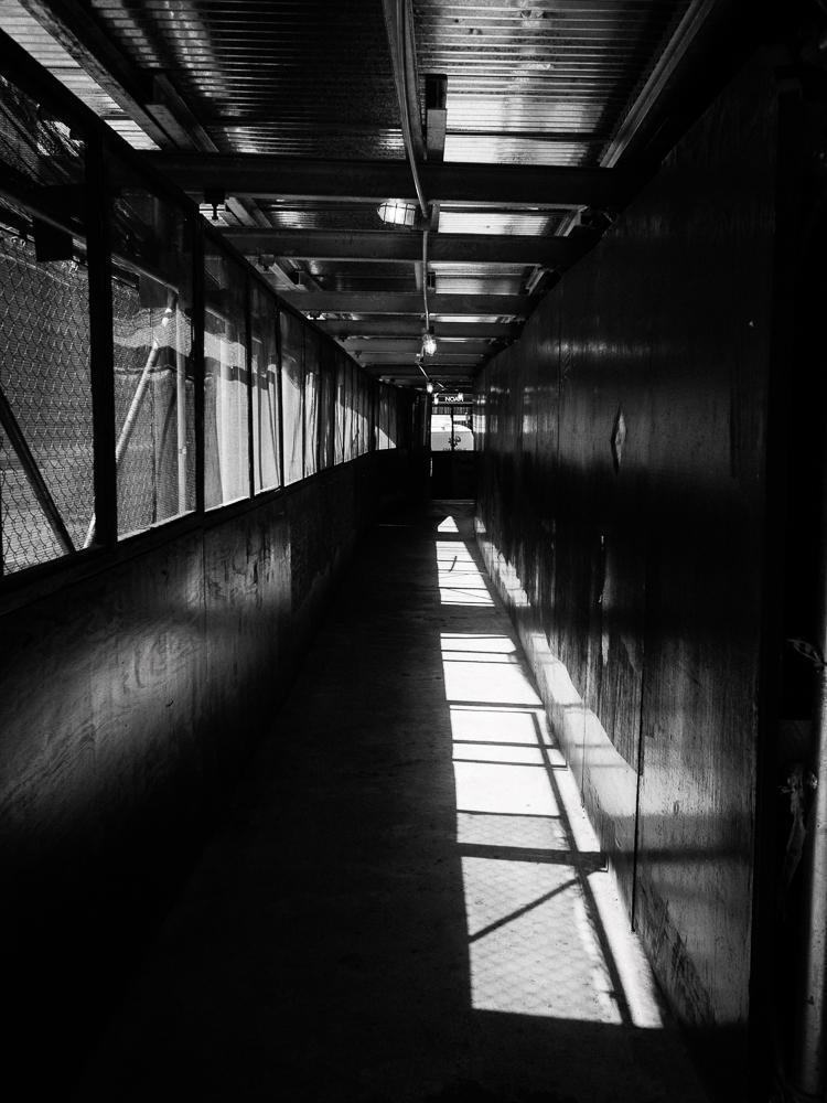 NYC-Street-Photography-Gotham-Jamiya-Wilson-03.jpg