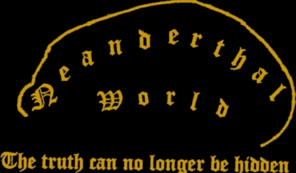 Logo N-World_black.jpg