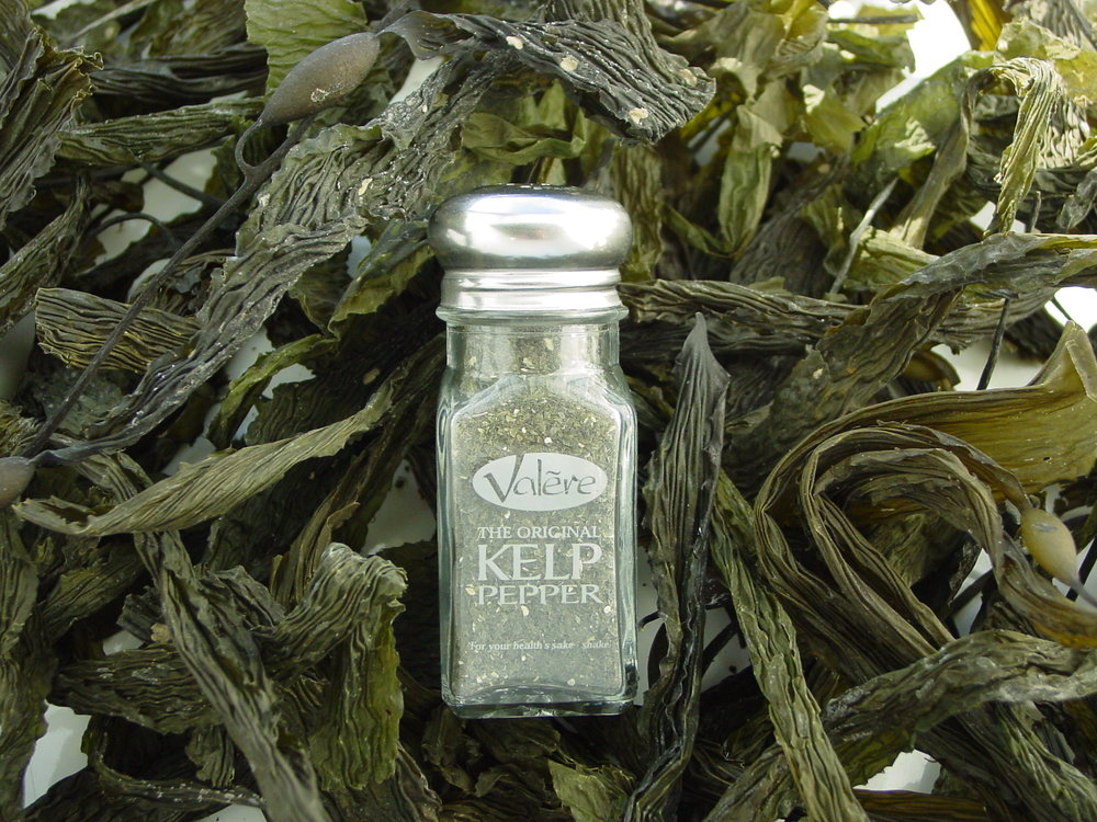 Kelp Pepper Pictures 020.jpg