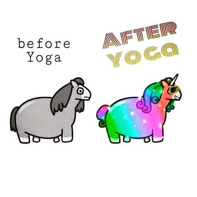 oh-yes-yoga-is-sure-to-put-the-shine-back-in-your-unicorn-yoga-yogahumour-yogafunnies.jpg