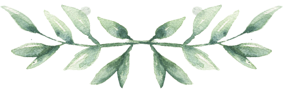 MF_Leaves_02.png