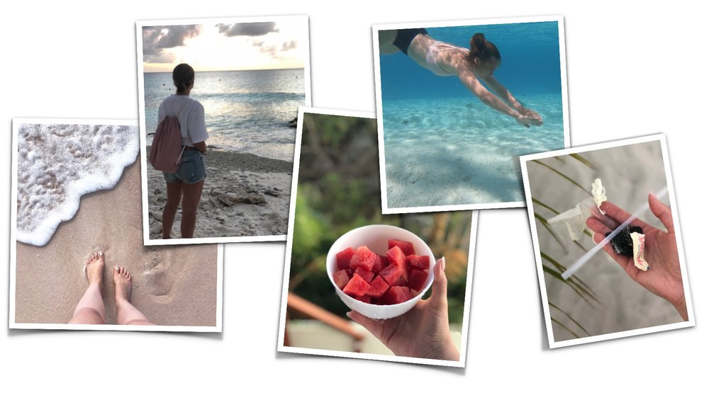 Bonaire Graphics 2.jpg