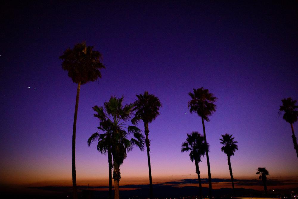 Venice-Beach-024.jpg