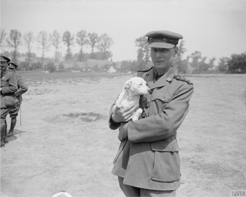 The Reverend John Redmond, a chaplain, holding a dog. Near Dranouter, West Flanders, Belgium on 12th June 1917.  Image courtesy of the Imperial War Museum.