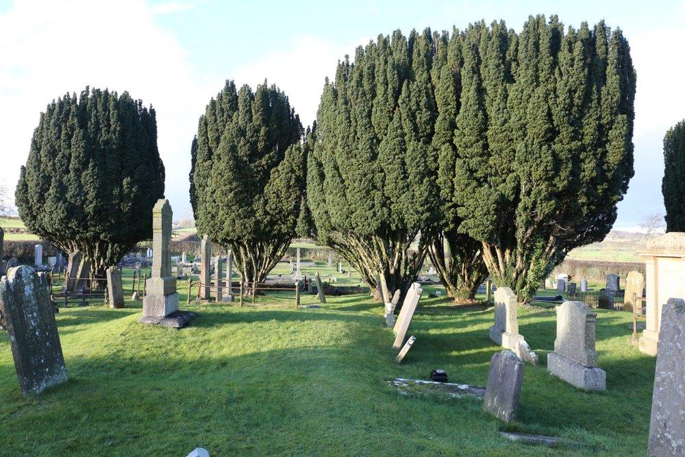 Kilbride CemeteryLR5C2375.jpeg