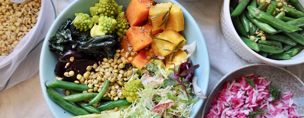 Learn to create delicious plant-based foods and desserts! -